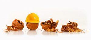 walnuts in hardhats